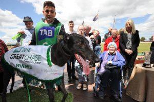 Promise Kept 2016 TAB Great Chase Winner