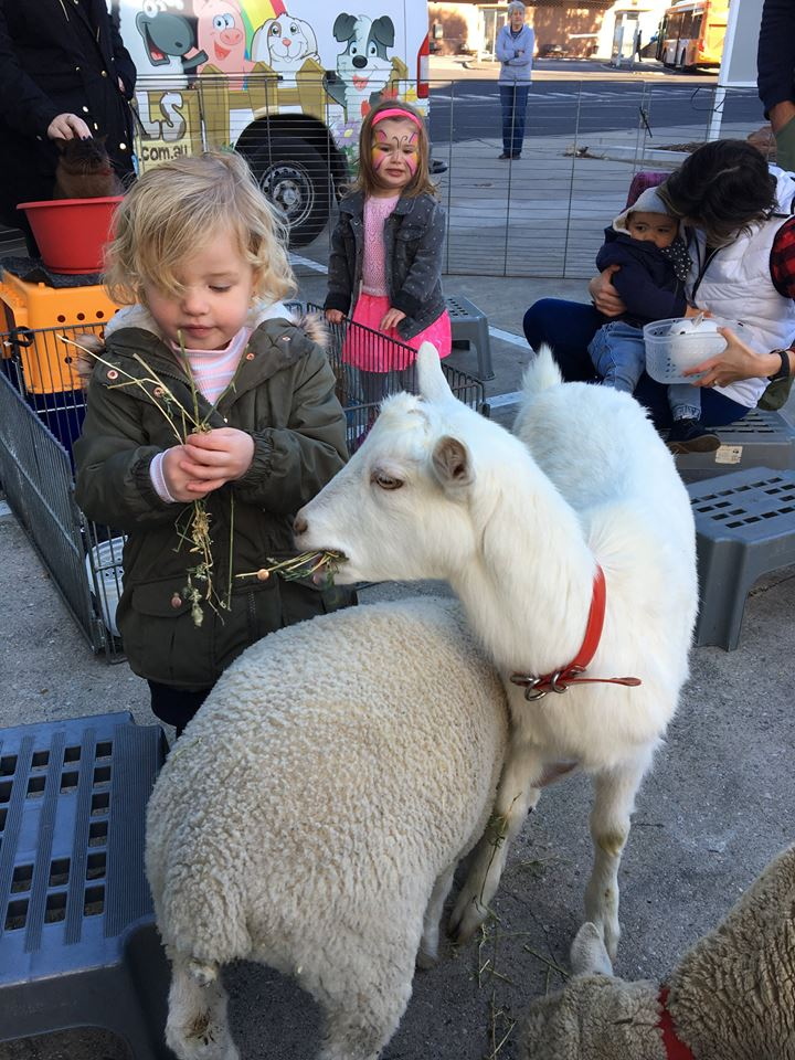 Petting zoo | Melbourne | Happy 1st Birthday