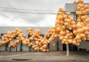 Organic Balloons | Geronimo
